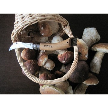Нож Opinel №8 грибной, блистер 001250