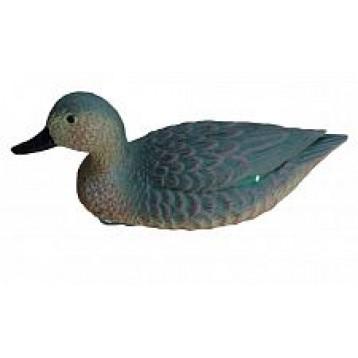Чучело чирка плавающего (утка)